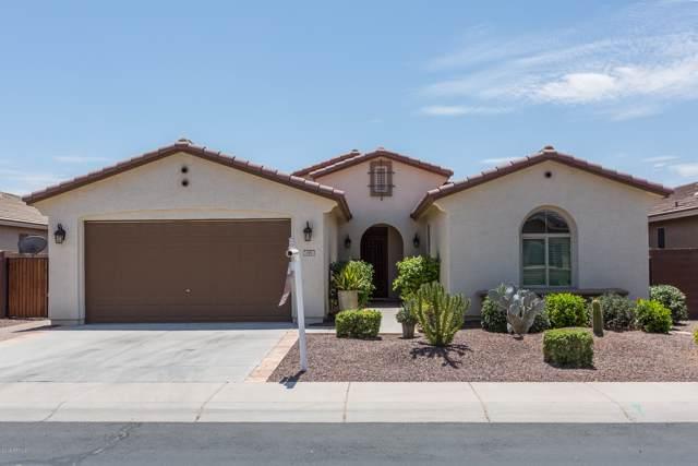 197 W Sweet Shrub Avenue, Queen Creek, AZ 85140 (MLS #5928897) :: Kepple Real Estate Group