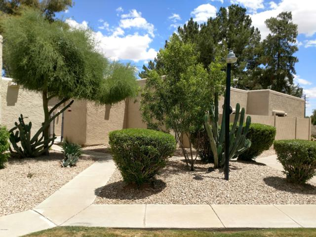 643 S Allred Drive, Tempe, AZ 85281 (MLS #5929105) :: CC & Co. Real Estate Team