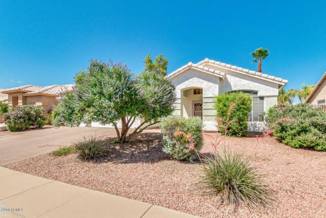 19447 N 37TH Way, Phoenix, AZ 85050 (MLS #5929238) :: Occasio Realty