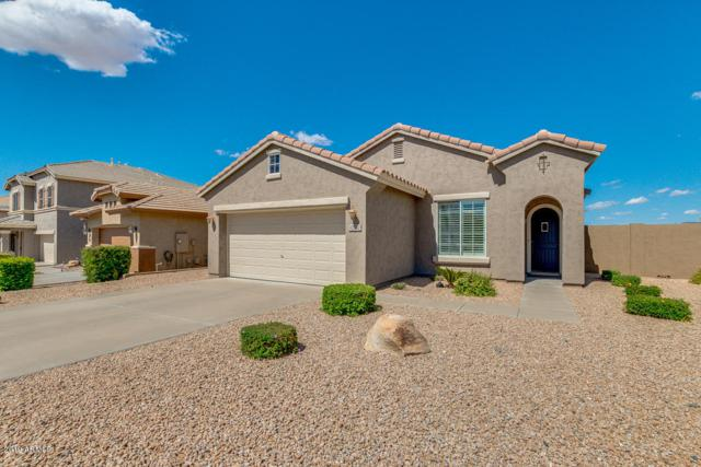42932 N Raleigh Court, Anthem, AZ 85086 (MLS #5929344) :: Yost Realty Group at RE/MAX Casa Grande