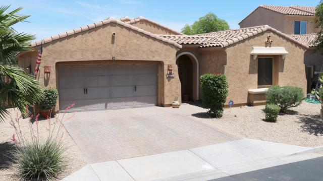14324 W Coronado Road, Goodyear, AZ 85395 (MLS #5929443) :: Realty Executives