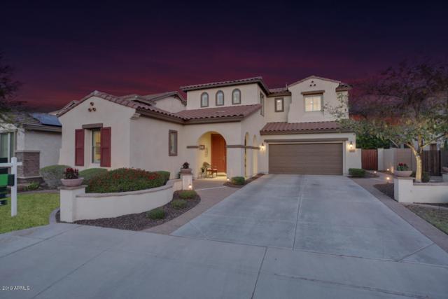 12579 W Blackstone Lane, Peoria, AZ 85383 (MLS #5930001) :: The Laughton Team