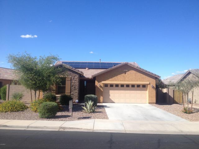 19658 Harrison Street, Buckeye, AZ 85326 (MLS #5930019) :: Yost Realty Group at RE/MAX Casa Grande