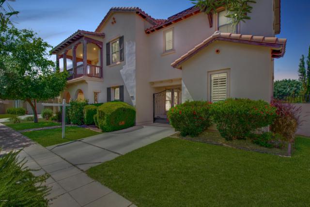 15176 W Dahlia Drive, Surprise, AZ 85379 (MLS #5930183) :: Team Wilson Real Estate