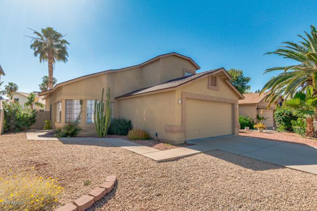 19210 N 31st St Street, Phoenix, AZ 85050 (MLS #5930207) :: The Kenny Klaus Team