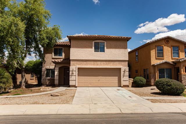 11060 E Verbina Lane, Florence, AZ 85132 (MLS #5930611) :: Team Wilson Real Estate