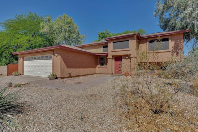 638 W Contessa Circle, Mesa, AZ 85201 (MLS #5930675) :: Yost Realty Group at RE/MAX Casa Grande
