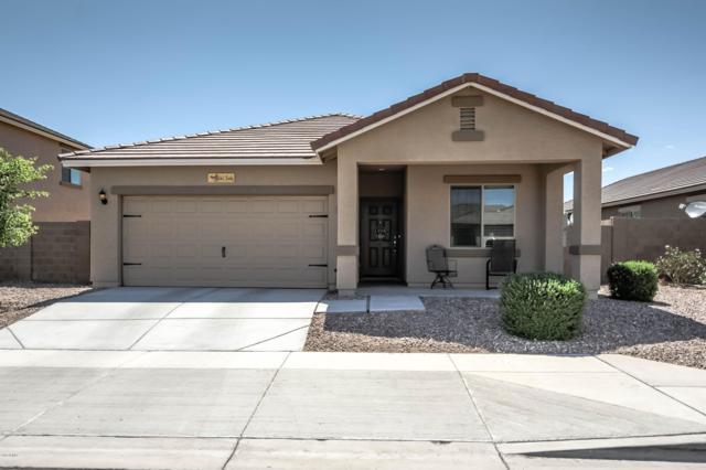 5062 S 246TH Lane, Buckeye, AZ 85326 (MLS #5930888) :: The Kenny Klaus Team