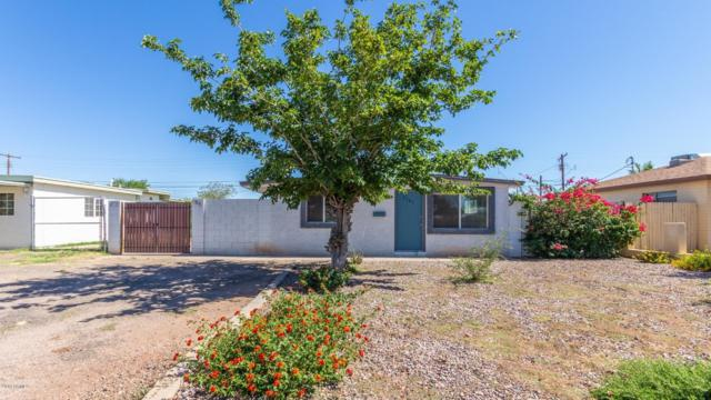 2105 E Howe Avenue, Tempe, AZ 85281 (MLS #5931066) :: Team Wilson Real Estate