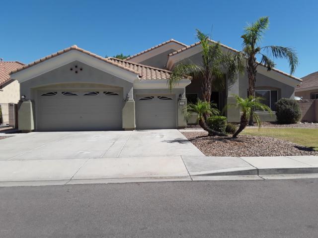 8646 W Irma Lane, Peoria, AZ 85382 (MLS #5931083) :: The Laughton Team