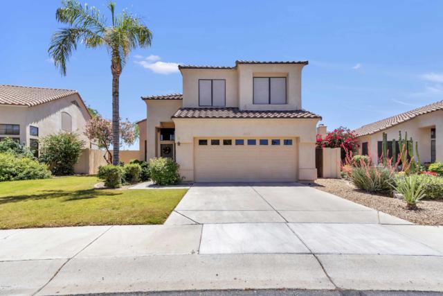 2123 W Tracy Lane, Phoenix, AZ 85023 (MLS #5931090) :: Home Solutions Team