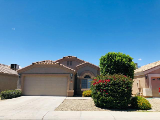 12442 W Redfield Road, El Mirage, AZ 85335 (MLS #5931550) :: Riddle Realty