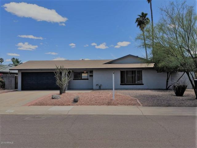 4423 S Newberry Road, Tempe, AZ 85282 (MLS #5931617) :: Riddle Realty