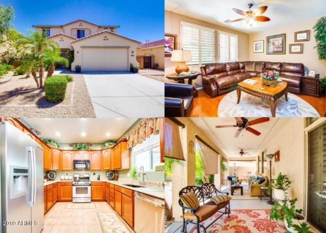 17361 W Morning Glory Street, Goodyear, AZ 85338 (MLS #5932445) :: The Results Group