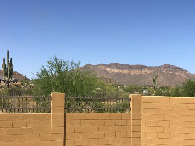 9166 E Kenwood Street, Mesa, AZ 85207 (MLS #5932496) :: The Everest Team at My Home Group