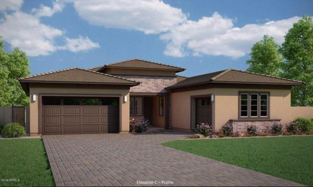 3668 E Spring Wheat Lane, Gilbert, AZ 85296 (MLS #5932781) :: Revelation Real Estate