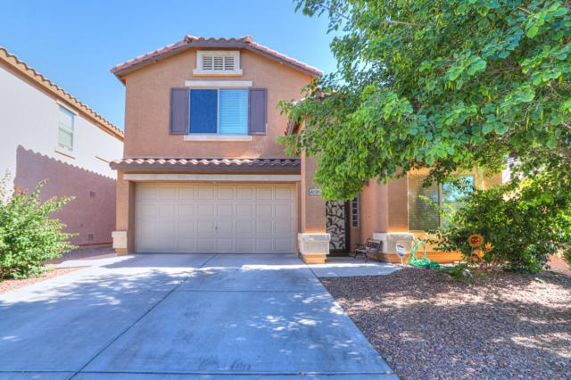40385 W Thornberry Lane, Maricopa, AZ 85138 (MLS #5932817) :: Lucido Agency