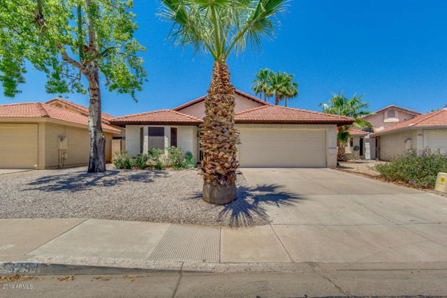 4294 W Gail Drive, Chandler, AZ 85226 (MLS #5933467) :: Revelation Real Estate