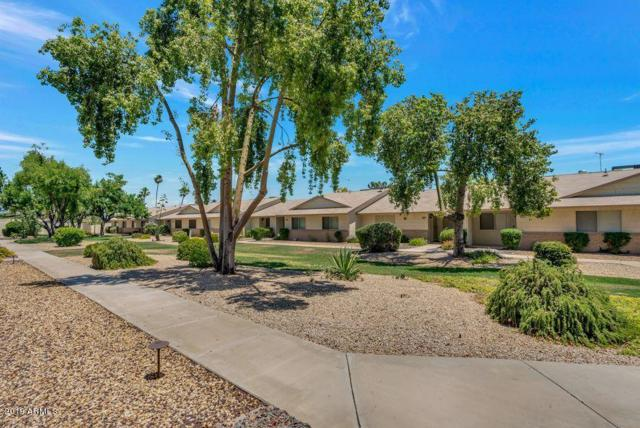 18675 N Palomar Drive, Sun City West, AZ 85375 (MLS #5933750) :: CC & Co. Real Estate Team