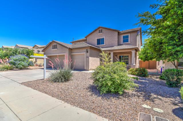 7567 W Georgetown Way, Florence, AZ 85132 (MLS #5933904) :: The Pete Dijkstra Team