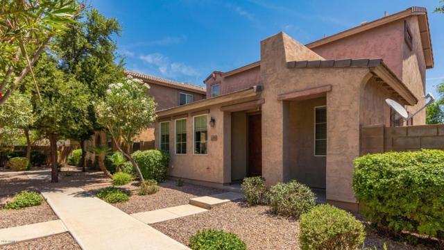 4292 E Carla Vista Drive, Gilbert, AZ 85295 (MLS #5934181) :: Revelation Real Estate