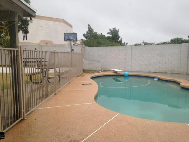 13625 N 47th Street, Phoenix, AZ 85032 (MLS #5934536) :: The Kenny Klaus Team