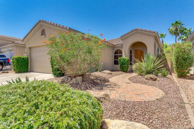 3126 E Windmere Drive, Phoenix, AZ 85048 (MLS #5934960) :: Revelation Real Estate