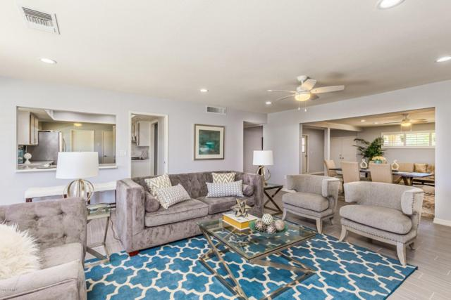 10357 W White Mountain Road, Sun City, AZ 85351 (MLS #5935013) :: Kepple Real Estate Group