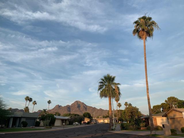 1325 E Glenn Drive, Phoenix, AZ 85020 (MLS #5936324) :: Keller Williams Realty Phoenix