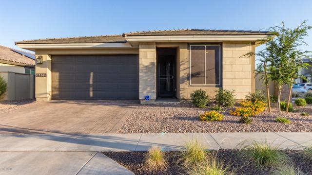14437 W Dahlia Drive, Surprise, AZ 85379 (MLS #5936383) :: Kortright Group - West USA Realty