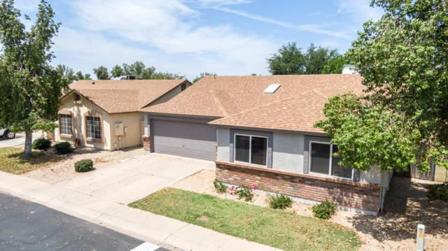 6335 E Brown Road #1167, Mesa, AZ 85205 (MLS #5936545) :: The Laughton Team