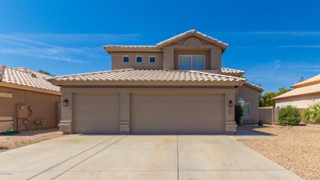 6631 W Hill Lane, Glendale, AZ 85310 (MLS #5936798) :: The Garcia Group