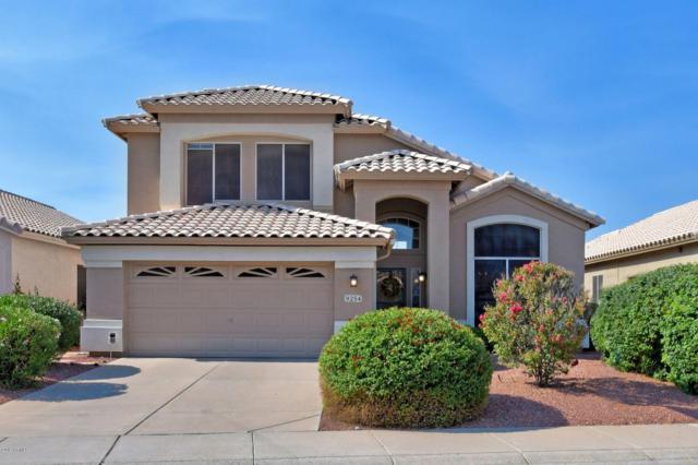 9254 E Wood Drive, Scottsdale, AZ 85260 (MLS #5936892) :: Homehelper Consultants