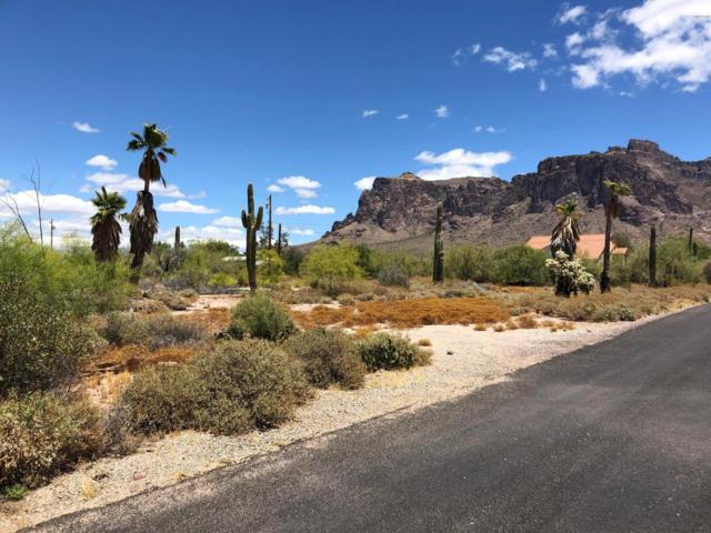 4920 E Pioneer Street, Apache Junction, AZ 85119 (MLS #5936985) :: The Results Group