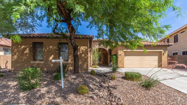 12455 W Montgomery Road, Peoria, AZ 85383 (MLS #5937475) :: Riddle Realty