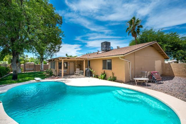 5029 E Laurel Lane, Scottsdale, AZ 85254 (MLS #5937628) :: Revelation Real Estate