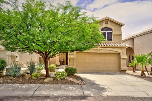 15229 S 13TH Way, Phoenix, AZ 85048 (MLS #5937645) :: Yost Realty Group at RE/MAX Casa Grande