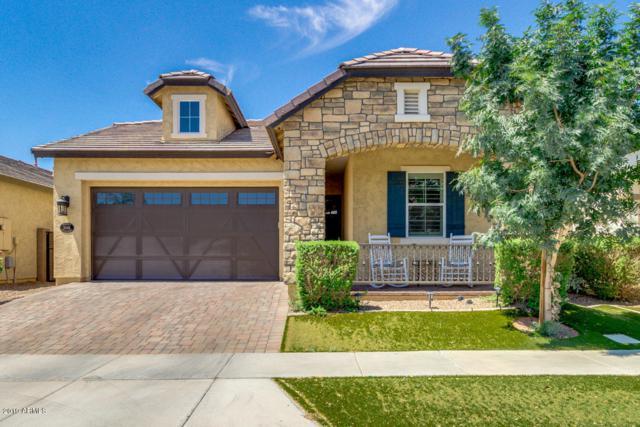 10416 E Nido Avenue, Mesa, AZ 85209 (MLS #5937725) :: Occasio Realty