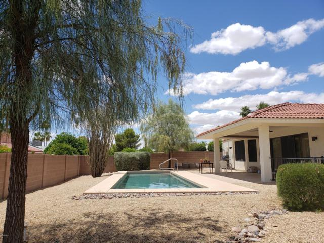 12423 W Morning Dove Drive, Sun City West, AZ 85375 (MLS #5937957) :: Yost Realty Group at RE/MAX Casa Grande