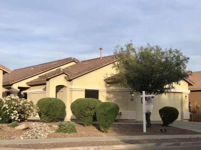 33513 N 26TH Avenue, Phoenix, AZ 85085 (MLS #5938115) :: Team Wilson Real Estate