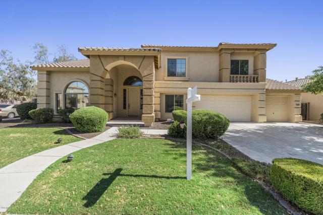 2409 W Quail Track Drive, Phoenix, AZ 85085 (MLS #5938363) :: Yost Realty Group at RE/MAX Casa Grande