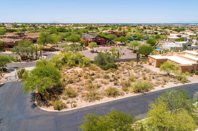 6446 E Trailridge Circle, Mesa, AZ 85215 (MLS #5938421) :: The Kenny Klaus Team