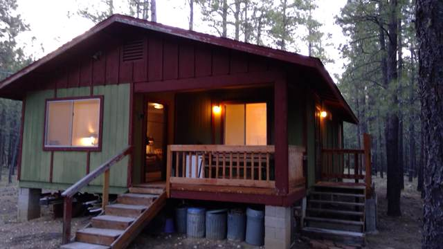 457 Mule Springs Trail, Forest Lakes, AZ 85931 (MLS #5938526) :: neXGen Real Estate