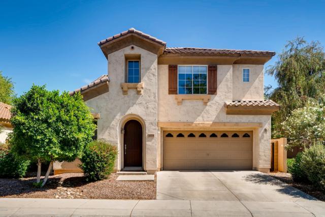 2076 E Stephens Place, Chandler, AZ 85225 (MLS #5938557) :: Lifestyle Partners Team