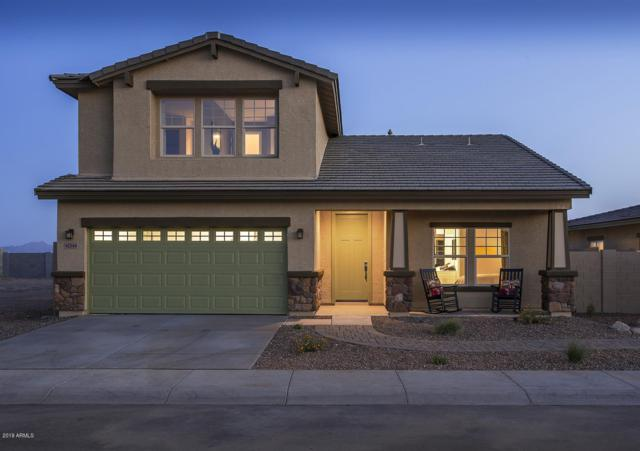 17566 N Rosa Drive, Maricopa, AZ 85138 (MLS #5938732) :: Yost Realty Group at RE/MAX Casa Grande