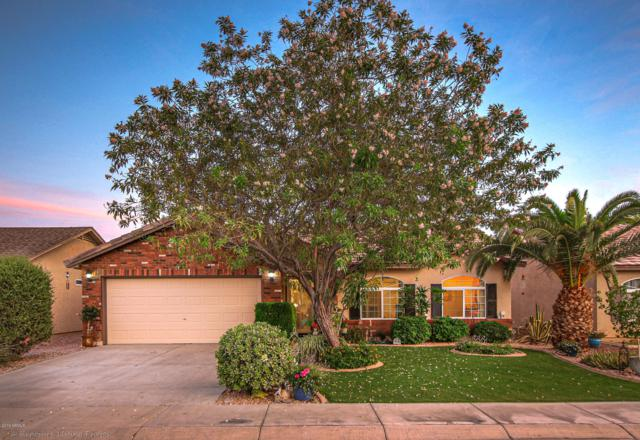 4945 E Shapinsay Drive, San Tan Valley, AZ 85140 (MLS #5939089) :: Revelation Real Estate