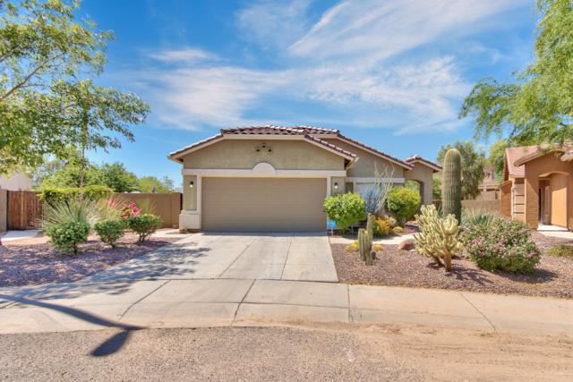 4558 W Stoneman Drive, Anthem, AZ 85086 (MLS #5939297) :: Revelation Real Estate