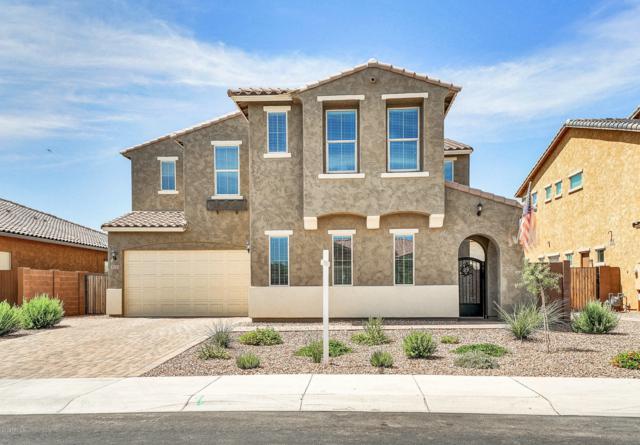 3721 E Jude Lane, Gilbert, AZ 85298 (MLS #5939367) :: Yost Realty Group at RE/MAX Casa Grande