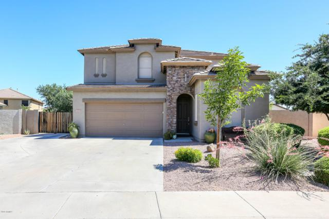 3502 E Arianna Avenue, Gilbert, AZ 85298 (MLS #5939829) :: The Kenny Klaus Team