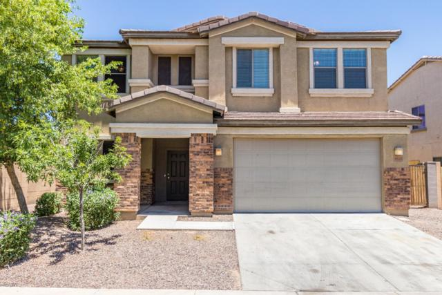 1020 E Nickleback Street, San Tan Valley, AZ 85143 (MLS #5940154) :: Yost Realty Group at RE/MAX Casa Grande